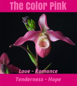 The Color Pink -  Love, Romance, Tenderness, and Hope