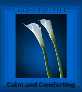 The Color Blue - Calm and Comforting